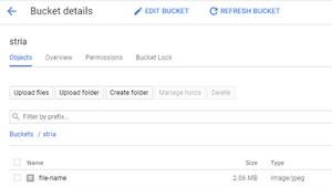 File Uploaded to Bucket Via GCS Node.Js SDK